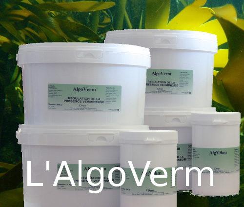 AlgoVerm